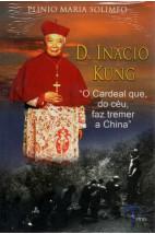 D. Inácio Kung - O Cardeal que, do Céu, faz tremer a China