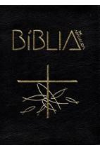 Bíblia de Aparecida -  Bolso Zíper Preta